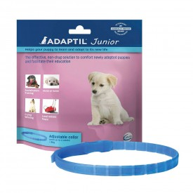 Adaptil Collar Junior - 1