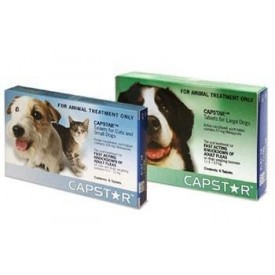 comprar-capstar-comprimidos-perro