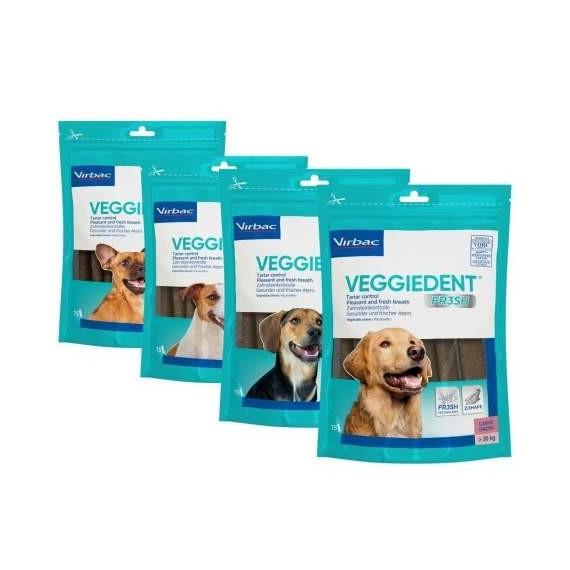 comprar-veggiedent-fresh