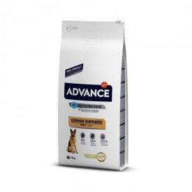 Advance Pastor Aleman - 1