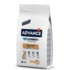 Advance-Yorkshire-Terrier-1,5-kg
