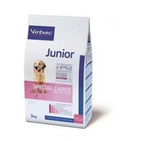 Junior-Special-Large