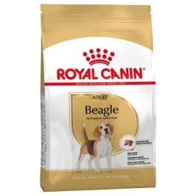 Royal Canin Beagle Adult - 1