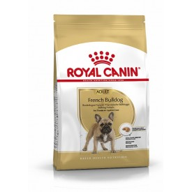 Royal Canin Adulto Bulldog Francés - 1
