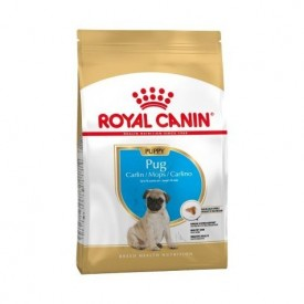 Royal Canin Puppy Carlino - 1