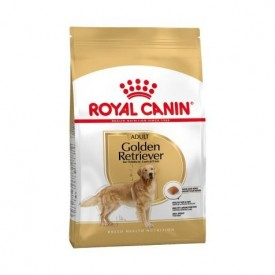 Royal Canin Adulto Golden Retriever - 1