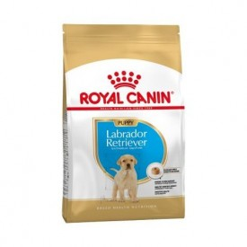 Royal Canin Puppy Labrador Retriever - 1