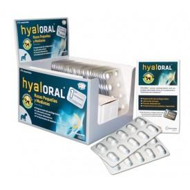 Hyaloral Razas Pequeñas y Medianas - 1