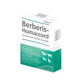 Berberis-Homaccord