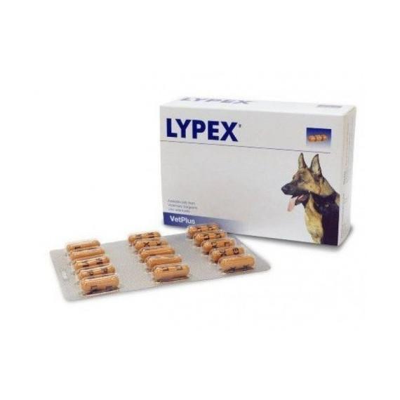Lypex-Blister-60-Cápsulas