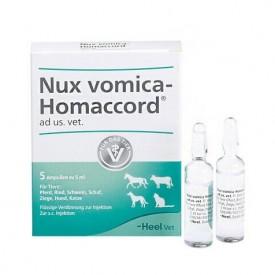 Nux-Vomica-Homaccord