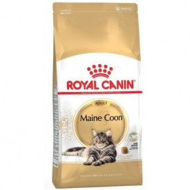 Royal Canin Gato Maine Coon - 1