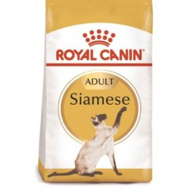 Royal Canin Gato Siamese Adult - 1