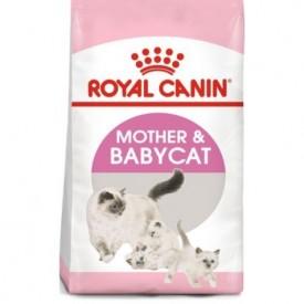 Royal Canin Gato Mother & Babycat - 1