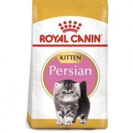 Royal Canin Gato Kitten Persian - 1