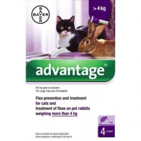 Advantage-Gatos-(+-4-kg)