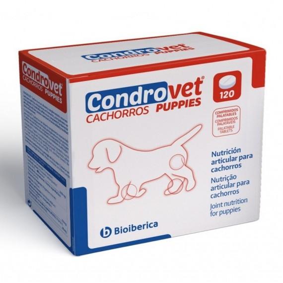 Condrovet Cachorros - 1