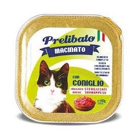 Prelibato Gato Conejo Tarrina - 1