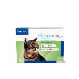Effipro Duo Spot - On Gatos - 1