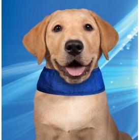 Collar Refrigerante para Perros - 1