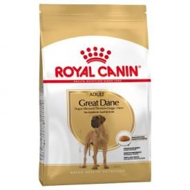 Royal Canin Adulto Gran Danés - 1