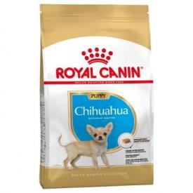 Royal Canin Chihuahua Puppy - 1