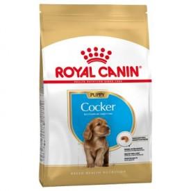 Royal Canin Cocker Puppy - 1
