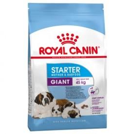 Royal Canin Giant Starter - 1
