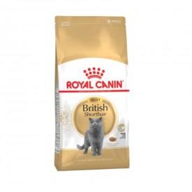 Royal Canin Gato British Shorthair - 1