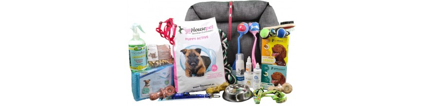 Comprar Productos para tu Perro Cachorro al Mejor Precio